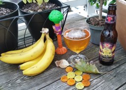 Donkey Kong Country 2 with Victory Brewing Company's Golden Monkey